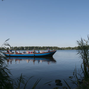 Een 2 uur durende vaart door het polderlandschap tussen Zoeterwoude en Vlietland.